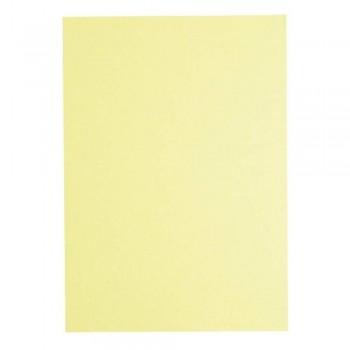 Light Colour A4 80gsm Paper - Ivory