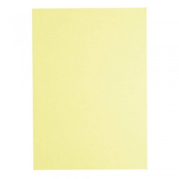 Light Colour A4 80gsm Paper - Ivory
